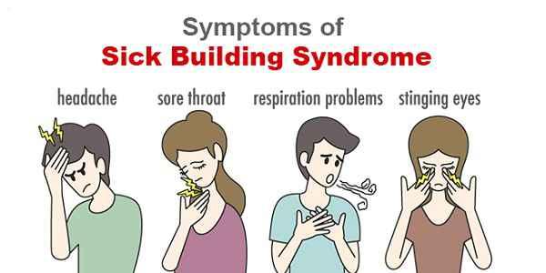 mnfaat tanaman lidah mertua engurangi sakit tenggorokan, flu, batuk, iritasi mata