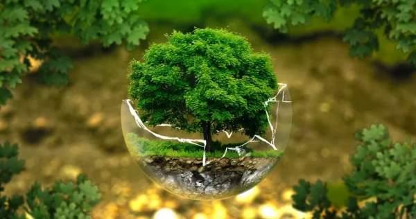Prospek Kerja Kesehatan Lingkungan 5 Tahun Kedepan